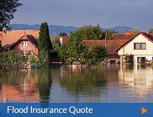 quote-flood